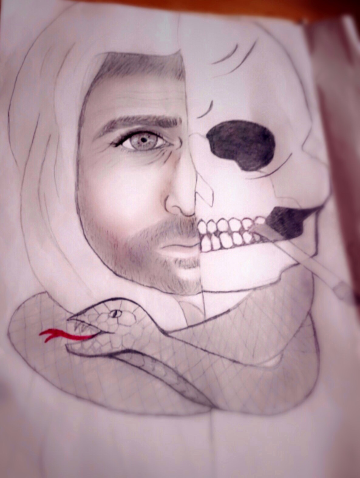 Pencil drawing of head and snake